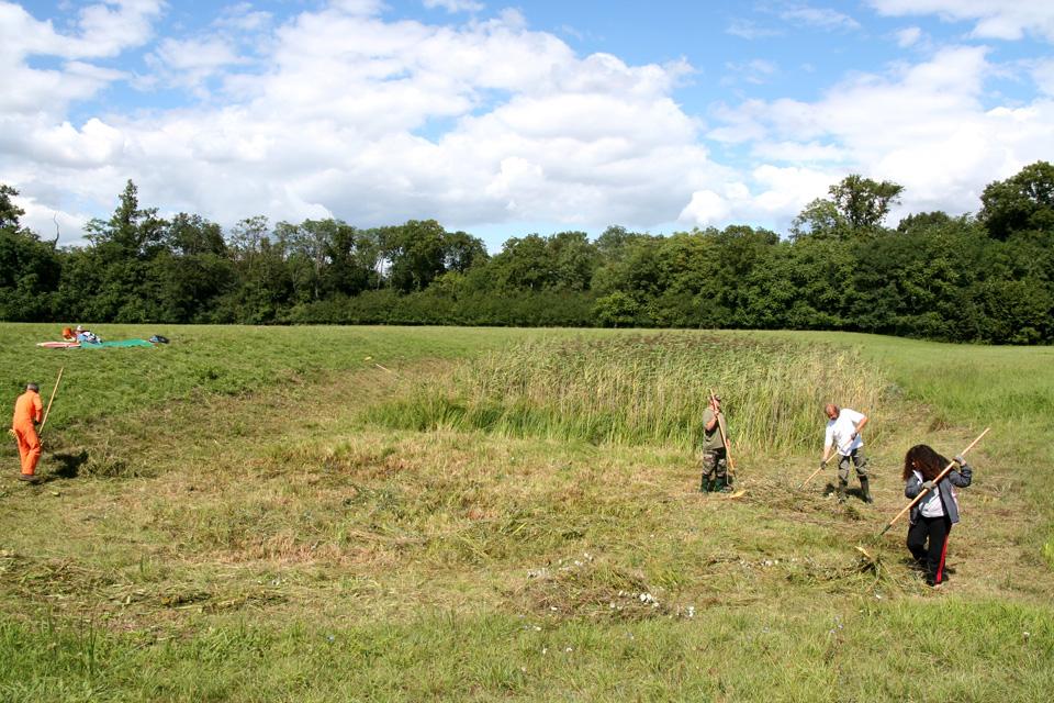 Chantier nature sur le site du Heyssel