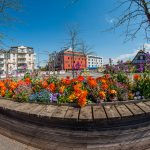 Fleurissement 2015 à Illkirch-Graffenstaden