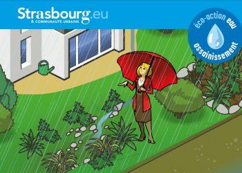 Gérer et valoriser les eaux de pluie dans son jardin