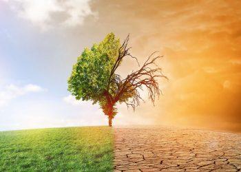 Questionnaire : Les effets du changement climatique