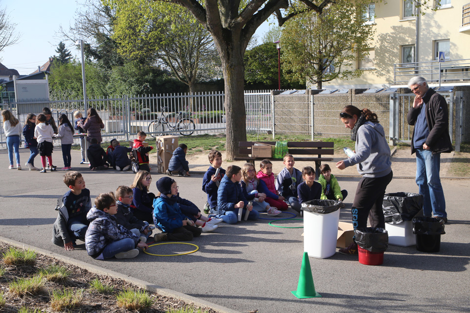 Sensibilisation à l'environnement dans les écoles d'Illkirch avec Alsace Nature