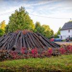 Fleurissement 2018 : 6 - l'île volcan - Rue du Fossé Communal
